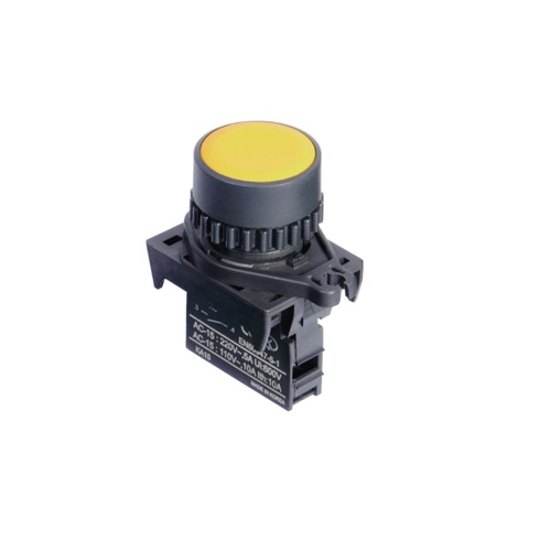 Ø22/25 Push button switches (Non-Flush)-S2PR-P1YA